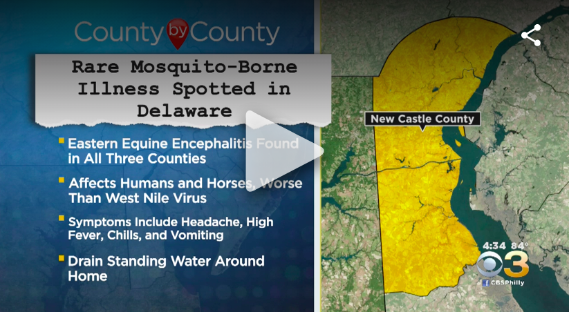 Mosquito-Borne Illness Deadlier Than West Nile Virus Confirmed In New Jersey, Health Officials Say